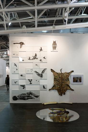 http://julienserve.com/files/gimgs/55_artissima-oiseau.jpg