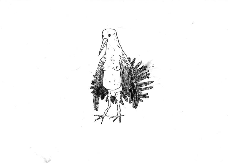 http://julienserve.com/files/gimgs/61_ofr-oiseau-10.jpg