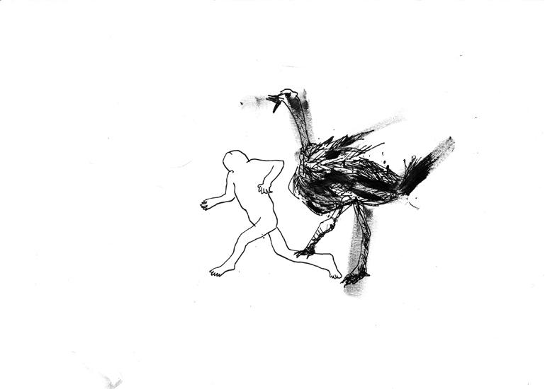 http://julienserve.com/files/gimgs/61_ofr-oiseau-12.jpg