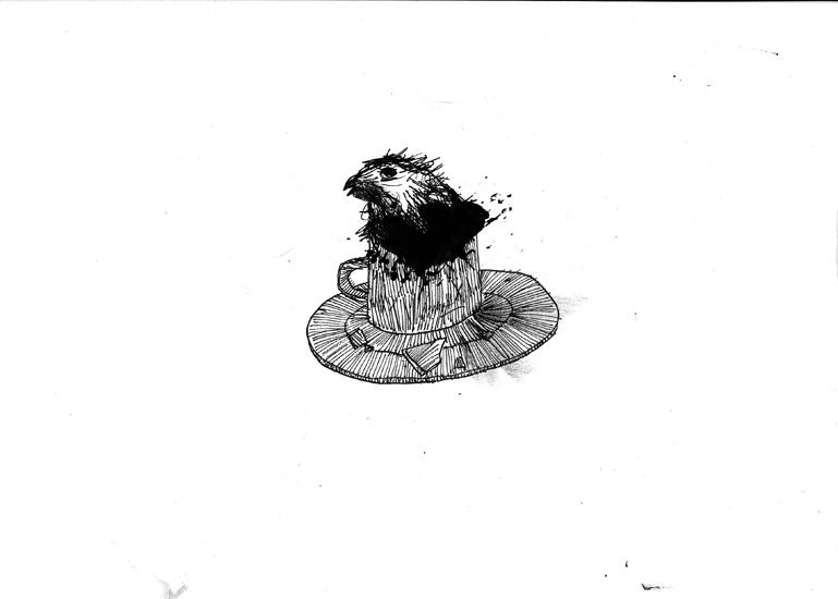 http://julienserve.com/files/gimgs/61_ofr-oiseau-17.jpg