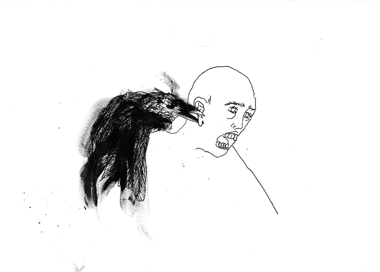 http://julienserve.com/files/gimgs/61_ofr-oiseau-20.jpg