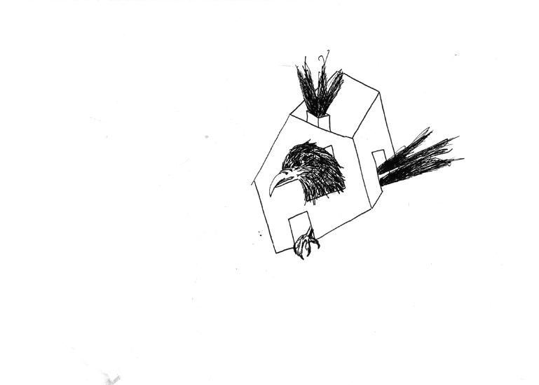 http://julienserve.com/files/gimgs/61_ofr-oiseau-25.jpg