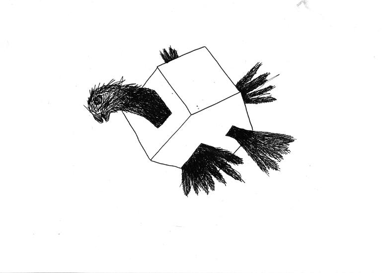http://julienserve.com/files/gimgs/61_ofr-oiseau-27.jpg