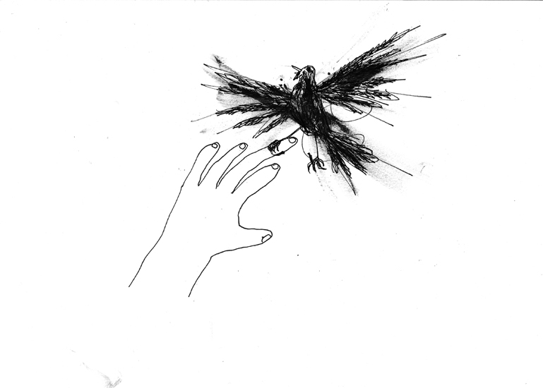 http://julienserve.com/files/gimgs/61_ofr-oiseau-3.jpg