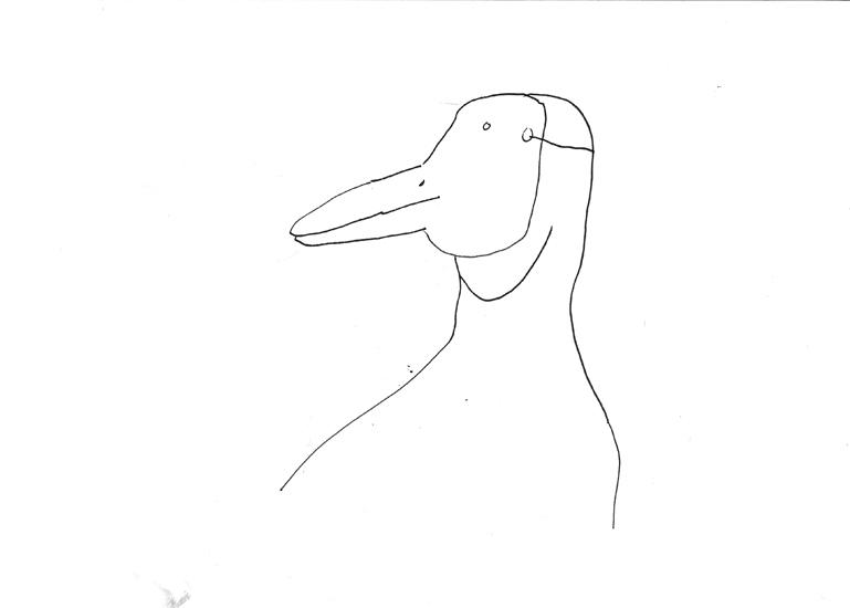 http://julienserve.com/files/gimgs/61_ofr-oiseau-32.jpg
