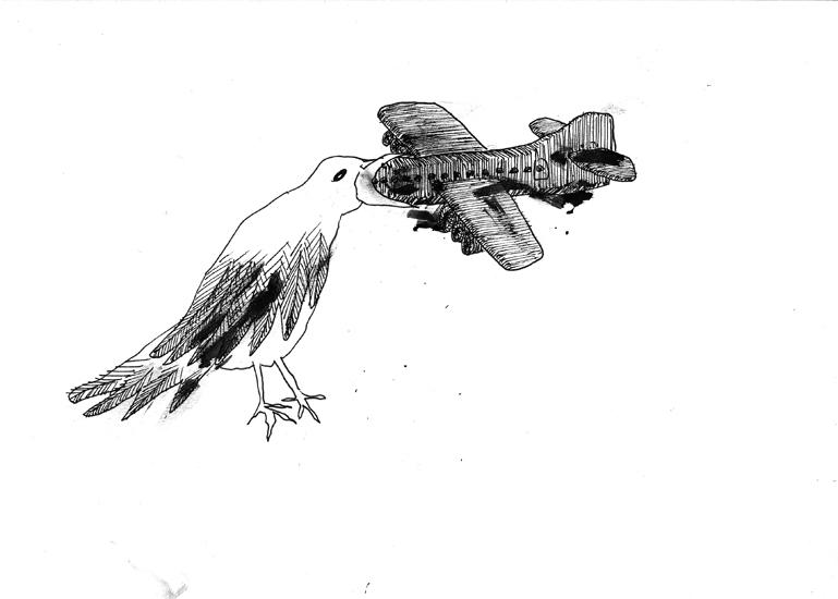 http://julienserve.com/files/gimgs/61_ofr-oiseau-4.jpg