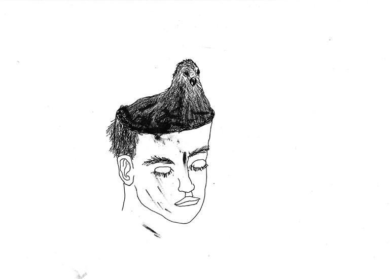 http://julienserve.com/files/gimgs/61_ofr-oiseau-44.jpg
