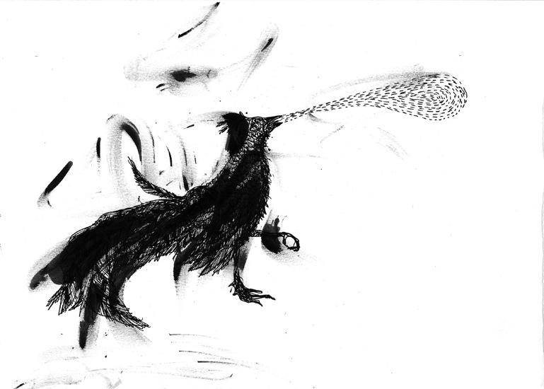 http://julienserve.com/files/gimgs/61_ofr-oiseau-45.jpg