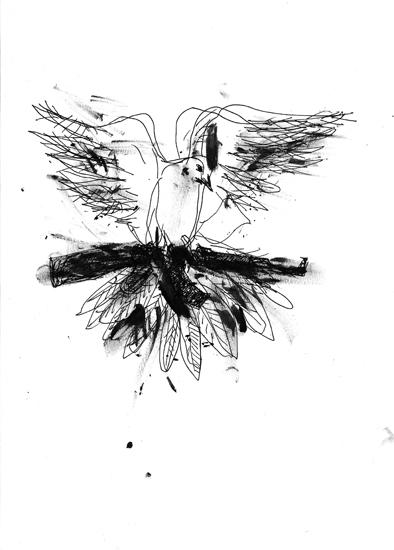 http://julienserve.com/files/gimgs/61_ofr-oiseau-47.jpg