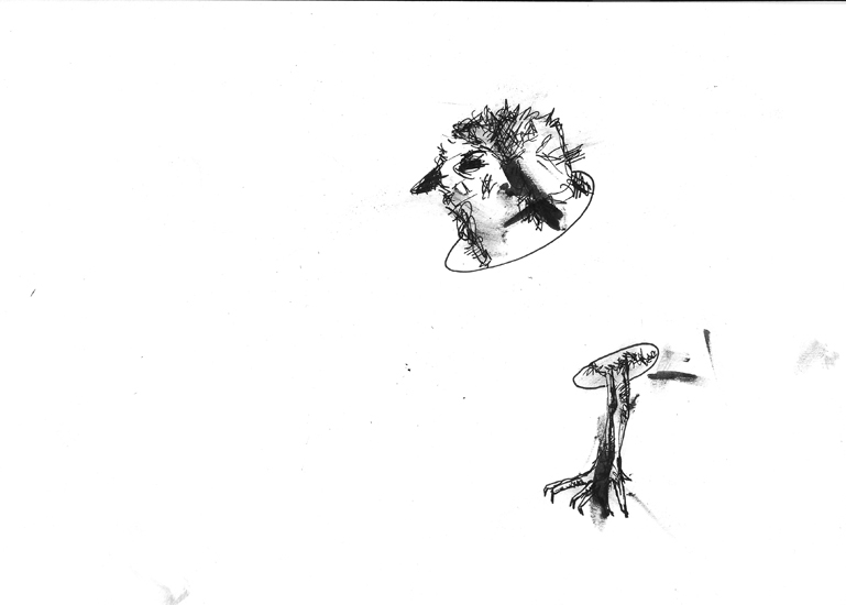 http://julienserve.com/files/gimgs/61_ofr-oiseau-51.jpg