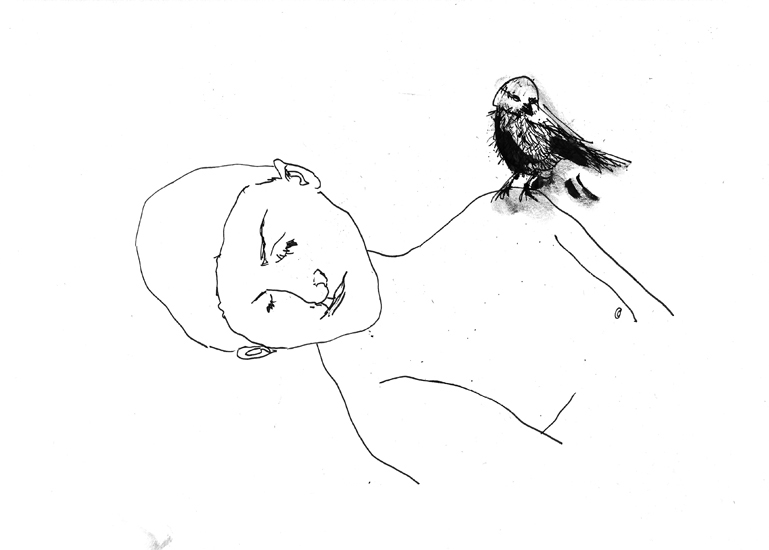 http://julienserve.com/files/gimgs/61_ofr-oiseau-55.jpg