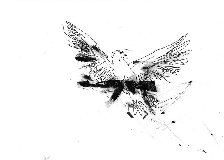 http://julienserve.com/files/gimgs/61_ofr-oiseau-57.jpg