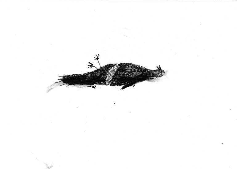 http://julienserve.com/files/gimgs/61_ofr-oiseau-6.jpg