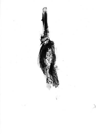 http://julienserve.com/files/gimgs/61_ofr-oiseau-62.jpg