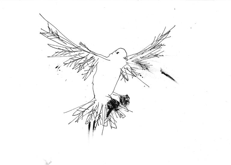 http://julienserve.com/files/gimgs/61_ofr-oiseau-63.jpg