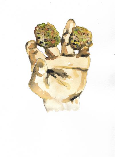 http://julienserve.com/files/gimgs/97_morchella-hand-9.jpg